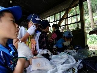 daycamp014.jpg