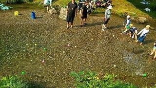 2016年8月CS夏キャンプ!_357.jpg